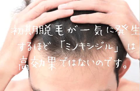 ミノキシジルが体に、頭にあっていて発毛効果が期待できるようですね。